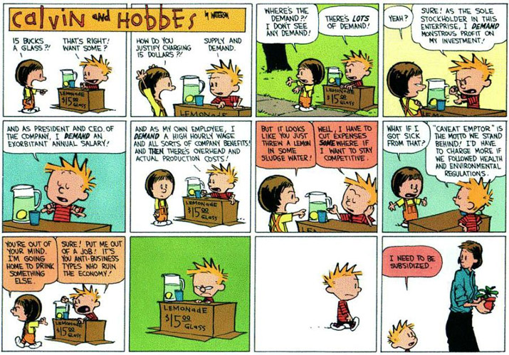 calvin-and-hobbes-subsidi
